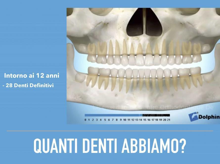 Quanti denti abbiamo?